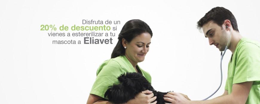 campaña esterilización eliavet
