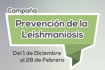 Destacado Leishmania
