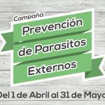 Campaña de Prevención de Parásitos Externos